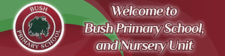 Bush Primary School & Nursery Unit, Dungannon